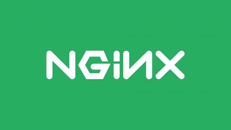 NGINX Admin Nasıl Kurulur?